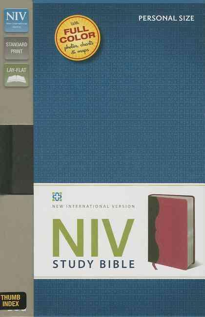NIV Study Bible: New International Version, Charcoal/Pink, Italian Duo-Tone, Personal Size (Paperback)