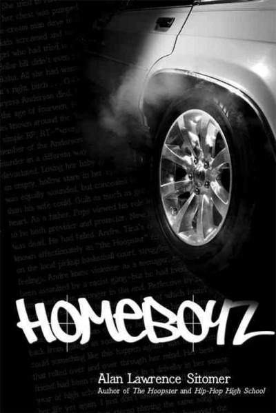 Homeboyz (Paperback)