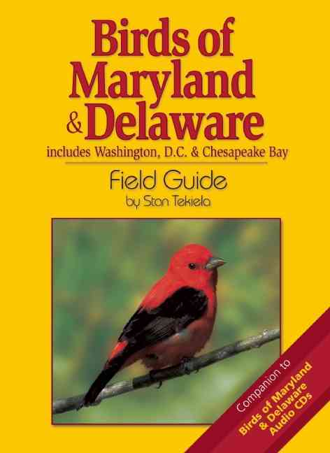 Birds Of Maryland & Delaware Field Guide: Includes Washington Dc & Chesapeake Bay (Paperback)