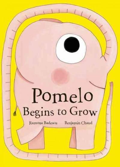 Pomelo Begins to Grow (Hardcover)