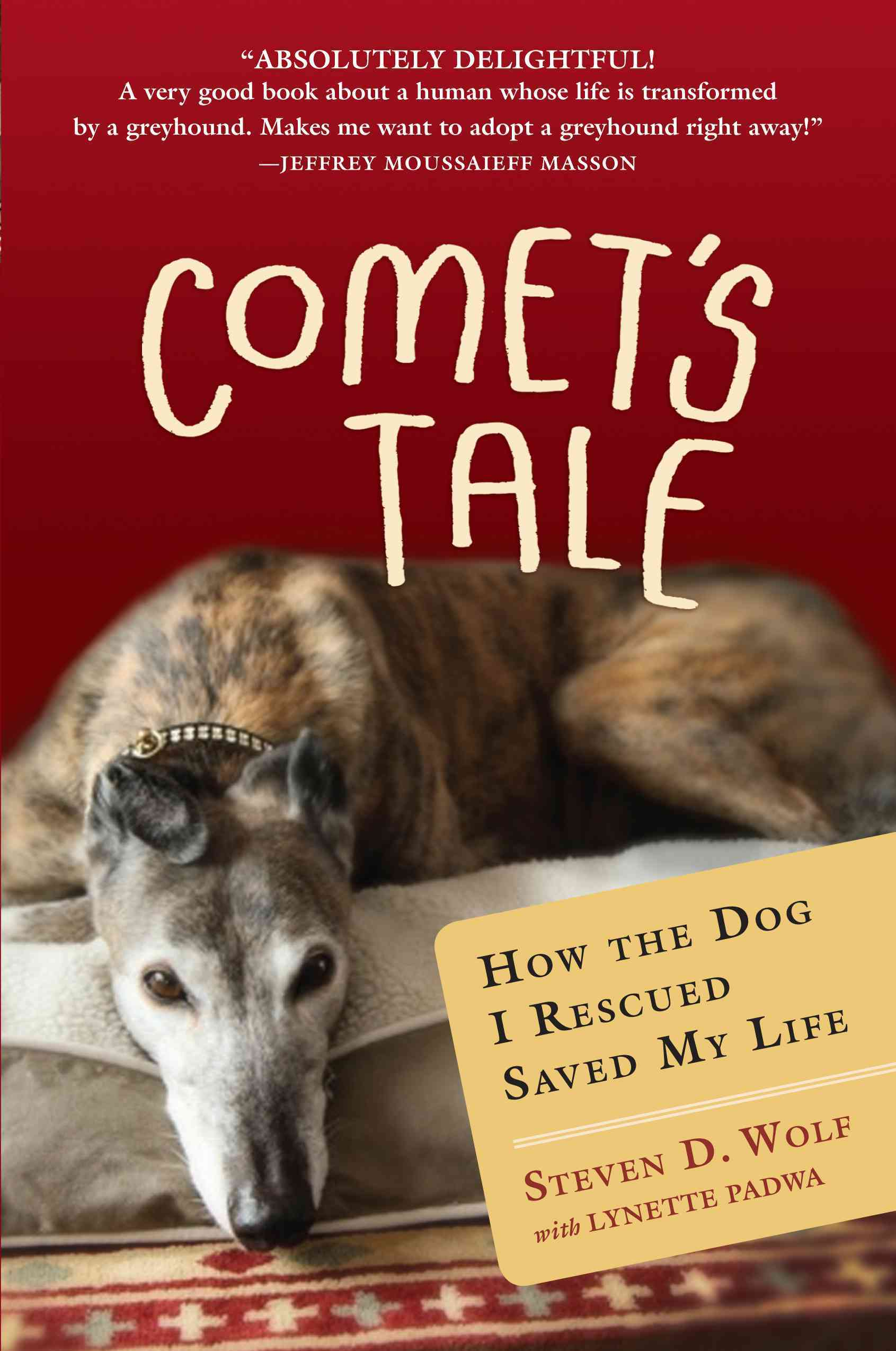 Comet's Tale: How the Dog I Rescued Saved My Life (Hardcover)