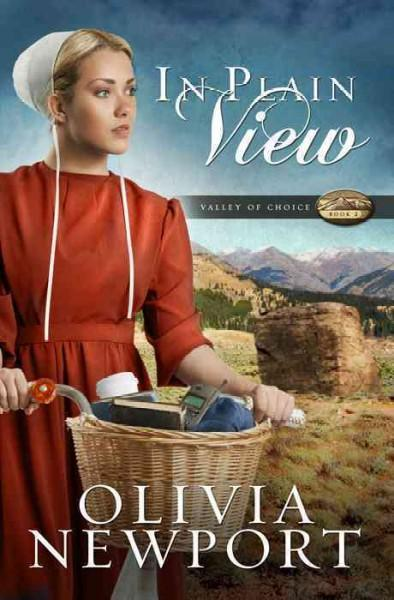In Plain View (Paperback)