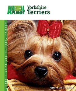 Yorkshire Terriers (Hardcover)