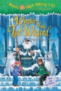 Winter of the Ice Wizard (Paperback)