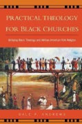 Practical Theology for Black Churches: Bridging Black Theology and African American Folk Religion (Paperback)