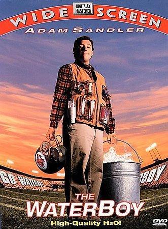 Waterboy (DVD)