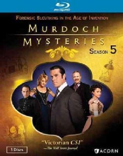 Murdoch Mysteries Collection: Season 5 (Blu-ray Disc)