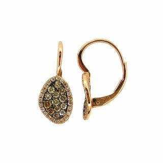 Kabella 18k Gold 5/8ct TDW White and Brown Diamond Pave Earrings (G-H, SI1-SI2)