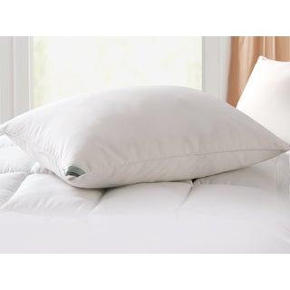 Kathy Ireland Microfiber Down Pillow