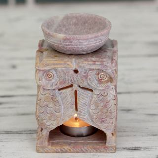 Handcrafted Soapstone 'Agra Owls' Oil Warmer (India)