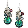 Charming Life Sterling Silver Paua Abalone Shell Fringe Earrings