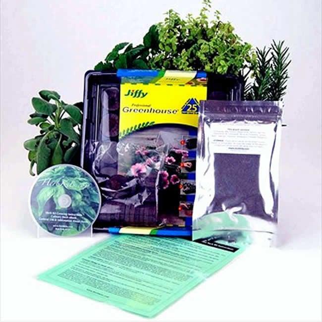 Compact Indoor Medicinal Herb Garden Starter Kit