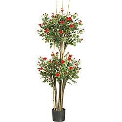Mini-rose Silk Tree