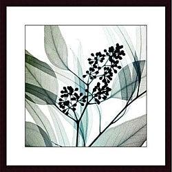 Steven N. Meyers 'Eucalyptus' Wood Framed Art Print