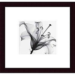 Steven N. Meyers 'Lily Muscadet' Wood Framed Art Print