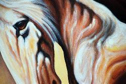 'White Stallion' Canvas Art