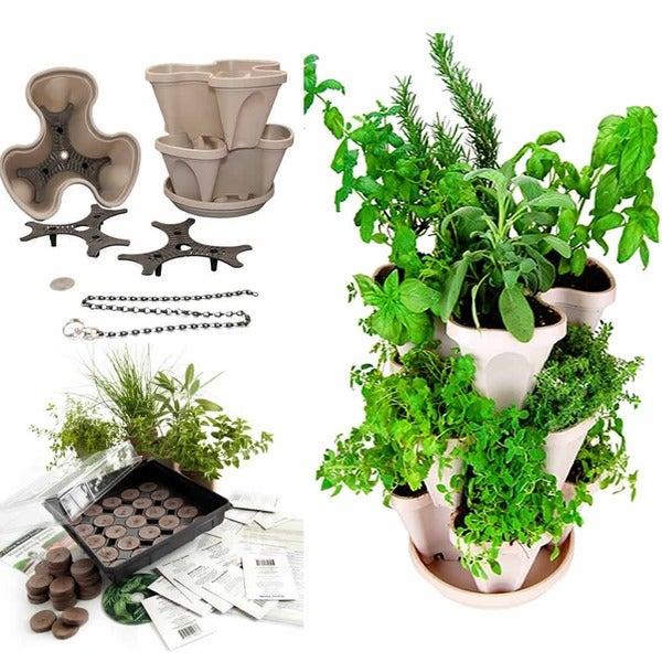 Indoor Medicinal Herb Garden Starter Kit & Self-Watering Planter