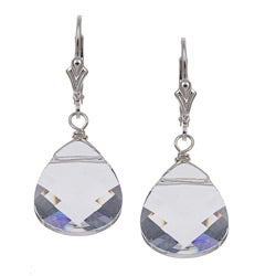 Charming Life Sterling Silver Clear Crystal Briolette Earrings