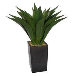 Laura Ashley 48-inch Artificial Aloe Plant
