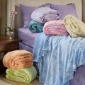 Horizons Fleece Full/ Queen-size Blanket