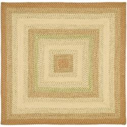 Safavieh Handwoven Indoor/Outdoor Reversible Multicolor Braided Polypropylene Rug (6' Square)