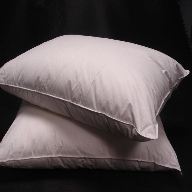 Eco-friendly Down Alternative Pillows (Set of 2)