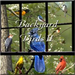 Naturescapes Music Backyard Birds II