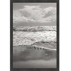 Marty Knapp 'Shorebirds, Point Reyes' Framed Print Art