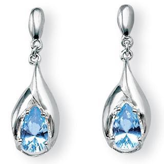 PalmBeach Sterling Silver Blue Topaz Dangle Earrings