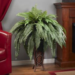 Boston Fern with Stand Silk Plant