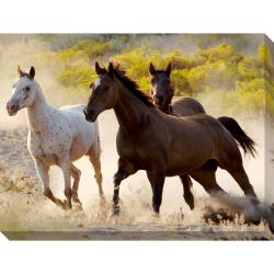 Running Free Oversized Gallery Wrapped Canvas