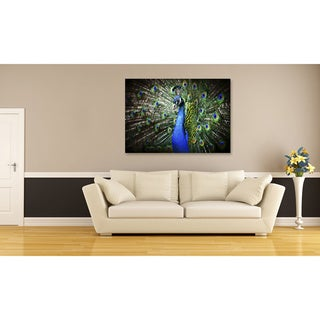 Peacock Oversized Gallery Wrapped Canvas