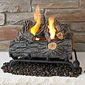 Real Flame 18-inch Convert-To-Gel Log Set