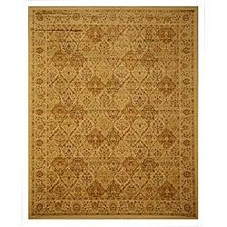 Panel Kashmir Rug (9'2 x 12'3)