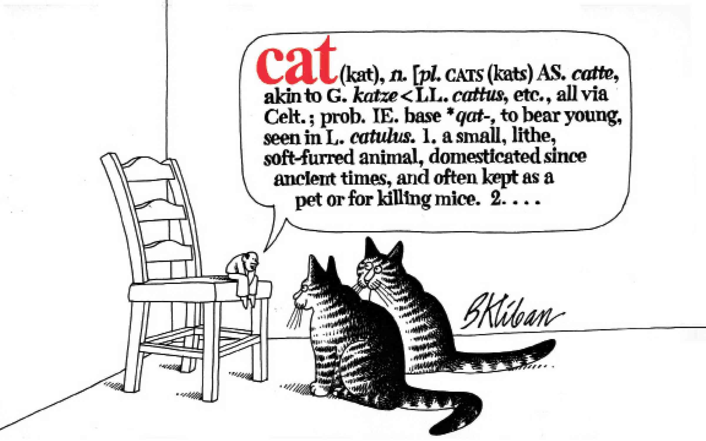 Cat (Paperback)