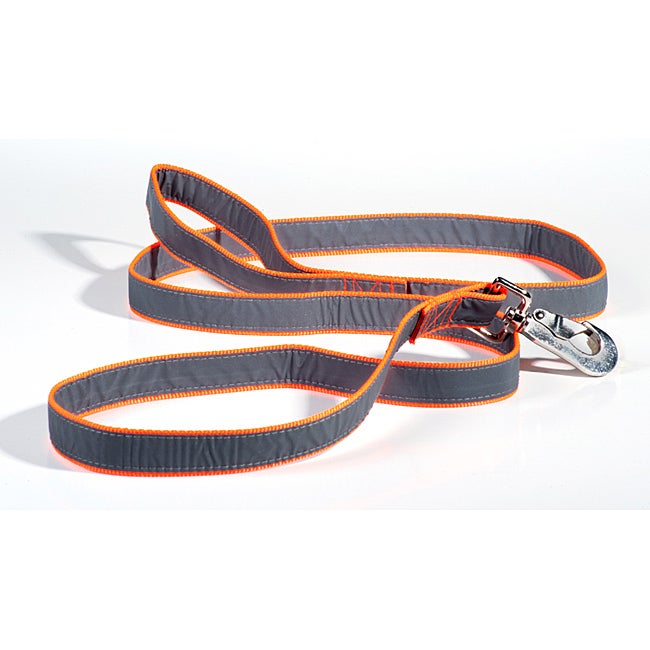 Petflect Reflective Six-foot Nylon Safety Dog Leash with Metal Clasp