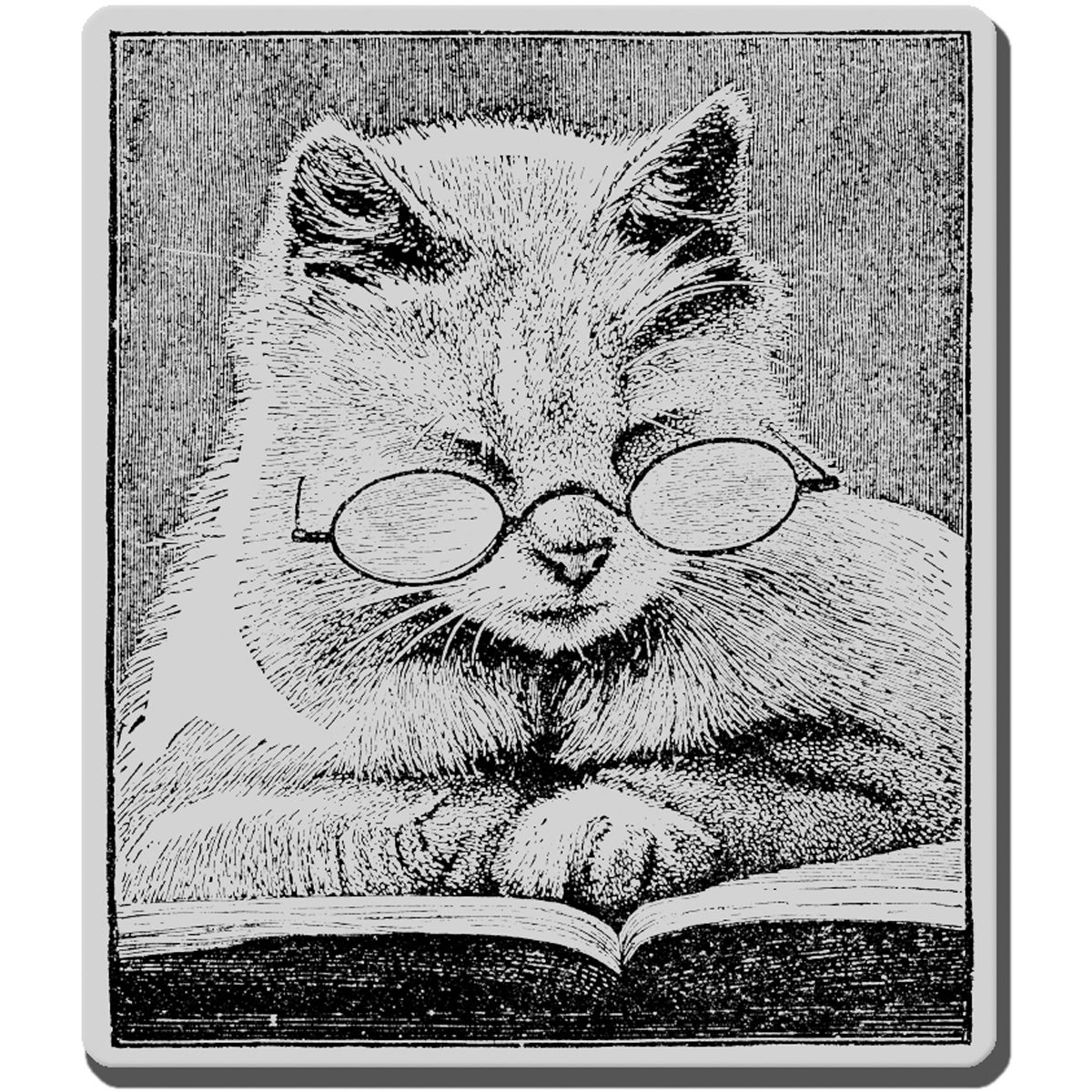 Stampendous 'Cattus Librum' Cling Rubber Stamp