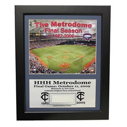 Minnesota Twins Metrodome Deluxe