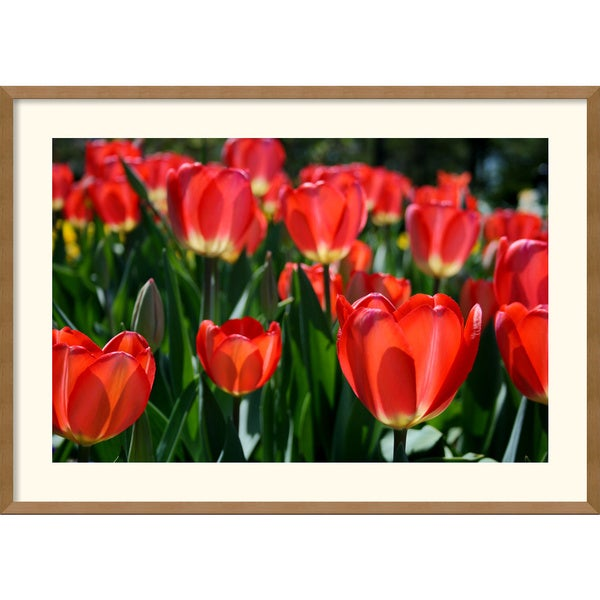 Andy Magee 'In the Garden' Horizontal Framed Art Print