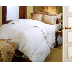 Oversized 370 Thread Count Supima Cotton Natural Down Blend Comforter