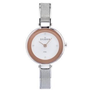 Skagen Women's Steel Slim Mesh Strap Watch