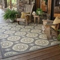 Outdoor/Indoor Grey/Gold Casual Area Rug