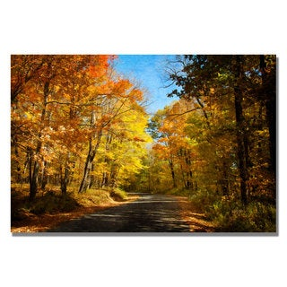 Lois Bryan 'Fall Walkway' Canvas Art