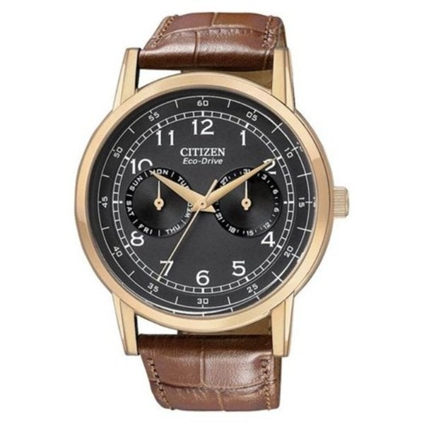 Citizen Men's 'Eco Drive' Multifunction Brown Leather Strap Watch