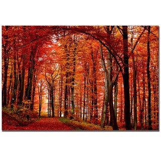 Philippe Sainte-Laudy 'The Red Way' Canvas Art
