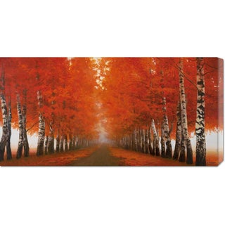 Adriano Galasso 'Viale di betulle' Stretched Canvas Art