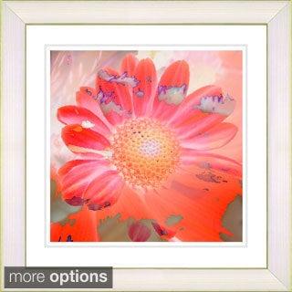 Studio Works Modern 'Daisy Bloom' Framed Print