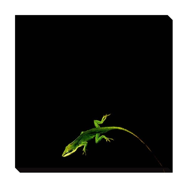 Green on Black Oversized Gallery Wrapped Canvas