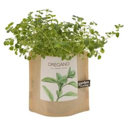 Garden-in-a-Bag Herb Collection Organic Oregano