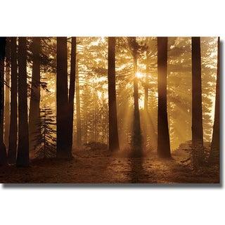 Mike Jones 'Tahoe Smokey Sunrise' Canvas Art